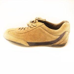 Brown  Tod's Sneaker