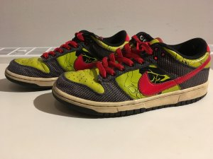 Bunter Nike Dunk low
