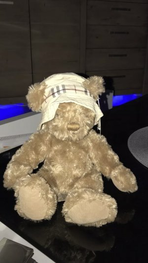 Burberry Teddy *NEU*