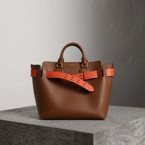 Burberry - The Medium Belt Bag aus Leder, Hellbraun mit Zusatz-Riemen