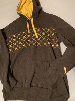 Hooded Sweatshirt multicolored