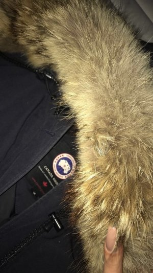 Canada Goose - Chilliwack Bomber - Navy Blue