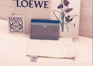Card Holder from LOEWE