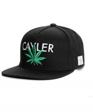 Cayler & Sons Baseball Cap black-forest green