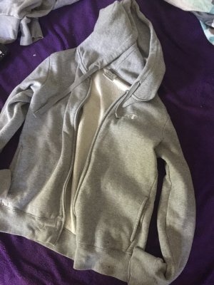 Champion Hoody light grey-grey