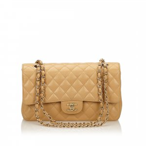 Chanel Classic Medium Double Flap Shoulder Bag