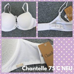 Chantelle Beha wit Gemengd weefsel