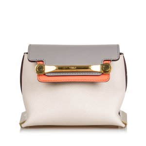 Chloe Leather Mini Clare Crossbody