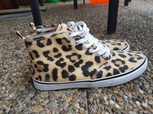 Chucks Leopard von H&M