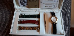 Citizen Watch silver-colored-gold-colored