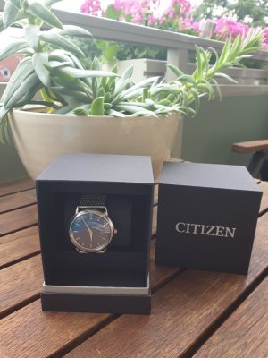 Citizen Watch With Metal Strap silver-colored