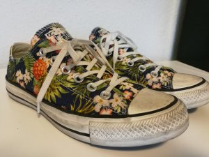 Converse All Star Tropical Low Sneaker
