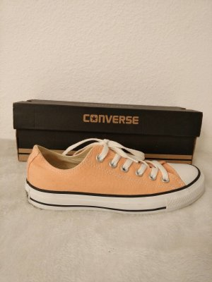 Converse Chucks geschnürt apricot/lachs Gr. 37.5 NEU