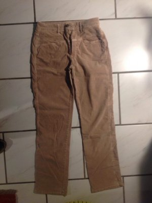 Cordhose in Cognac von Closed in 42