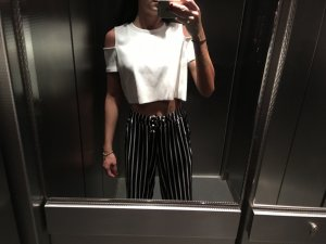 Zara Trafaluc Cropped top room