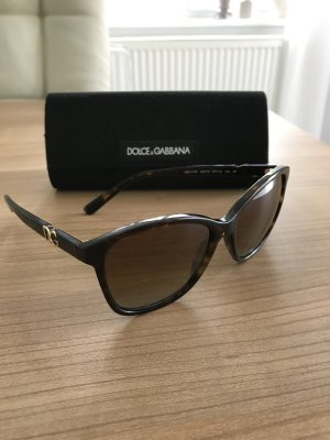 Dolce & Gabbana Sunglasses dark brown