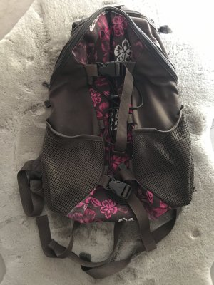 Dakine School Backpack brown