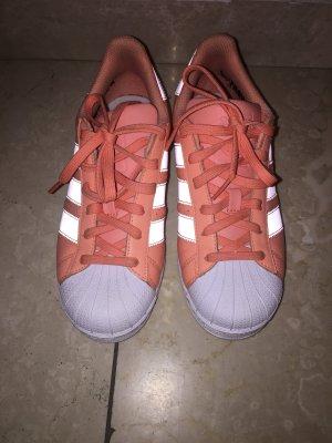 Adidas Originals Sneaker stringata albicocca