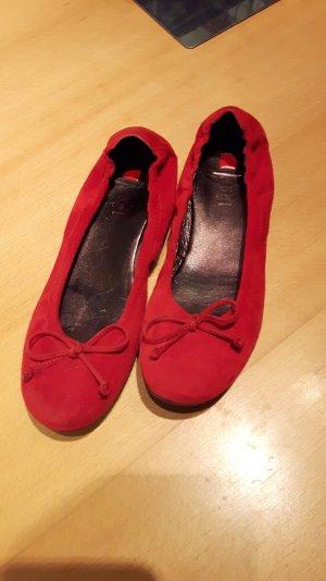 Damen Schuhe von Högl. Ballerinas rot