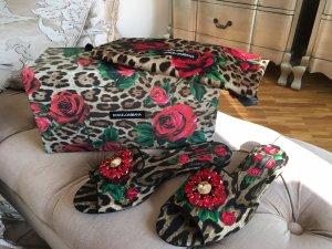 Dolce & Gabbana  - Slipper Leopard Rosen Strass