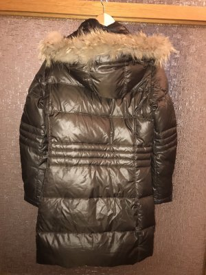Dolomite Down Coat brown