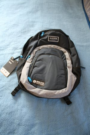 Dakine School Backpack white-dark blue