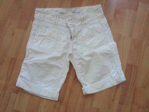 edc Shorts Gr. 36