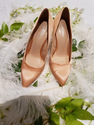 Catwalk Pointed Toe Pumps nude