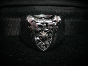 Elfcraft Elf Craft Silber Ring Wappen + Meteorit