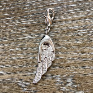 Engelsflügel-Charm (silber)