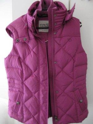 Esprit - Damen-Daunenweste - TOP - pink/lila - Strickkragen - Taillenweite verstellbar