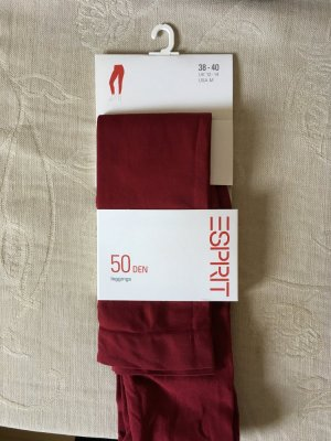 Esprit Leggings rojo oscuro-burdeos