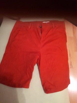 esprit shorts Gr.38, nur 2x getragen.