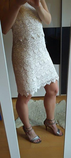 Esprit Lace Dress multicolored cotton