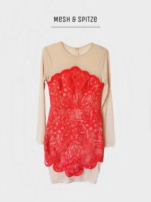 Exklusives Kleid mit mesh und spitze neu von missguided