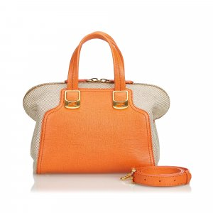 Fendi Bicolored Canvas Chameleon