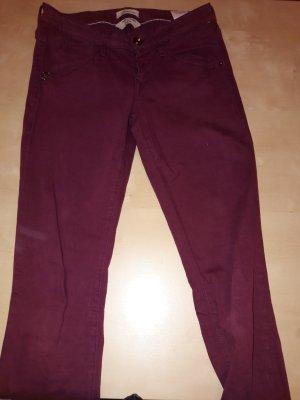 Fornarina Jeans violett