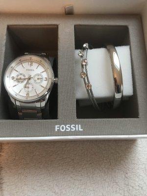 Fossil Set