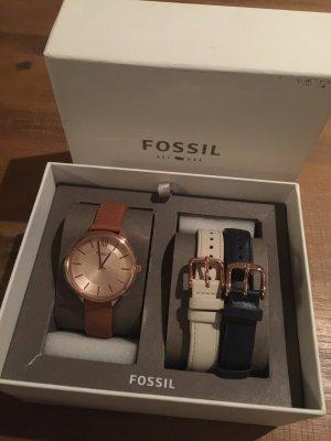 Fossil Uhr Armbanduhr Damenuhr braun blau weiß neu