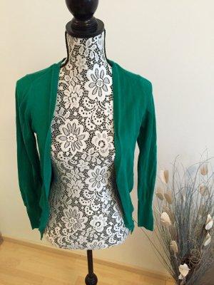 Frühlingshafter Cardigan - Zara Knitwear