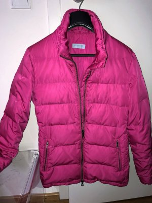 Blue Strenesse Down Jacket pink