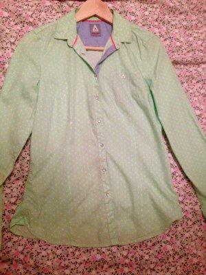 gaastra hemd neu grün weiss s