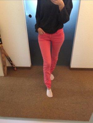 Gaastra Jeans