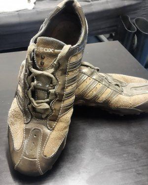 Geox Schuhe ( braun )