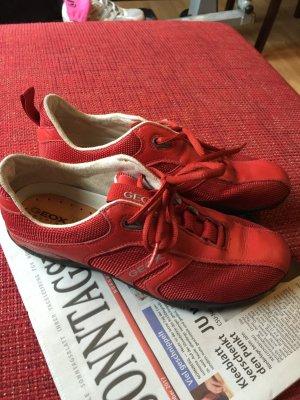 Geox Sneakers donkerrood