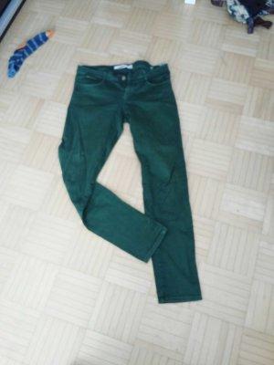 geradegeschnittene grüne Jeans