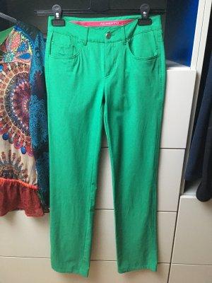 Alberto Pantalon de sport vert
