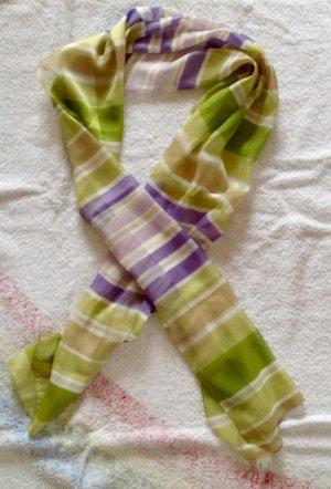 Grün/violetter Schaal transparent