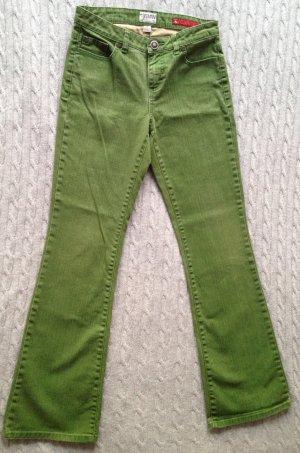 grüne Hose von TOMMY HILFIGER Denim