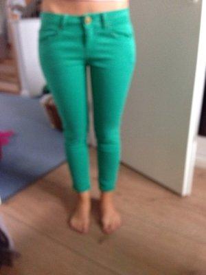 Grüne Hose von Zara, super Qualiät, tolle Farbe!